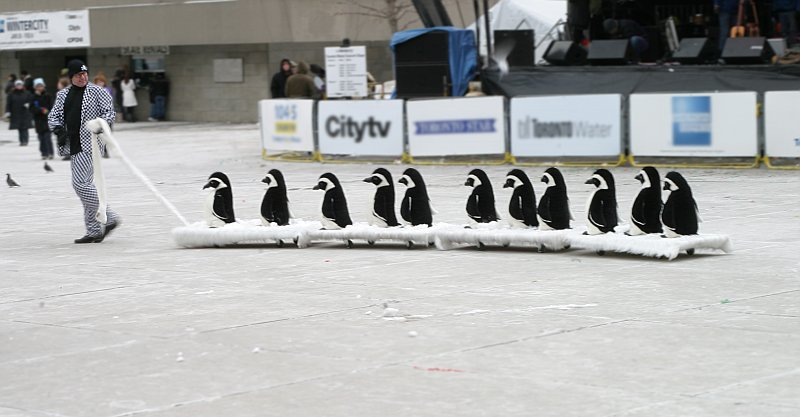 City Hall penguins    (click for previous picture)