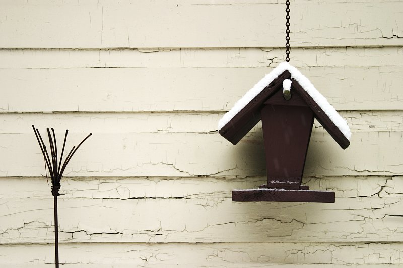 Garage birdhouse    (click for previous picture)