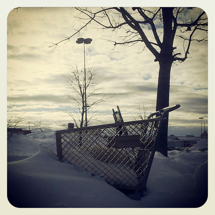 Shopping cart snow    (click for previous picture)