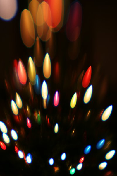 Lensbaby tree    (click for previous picture)