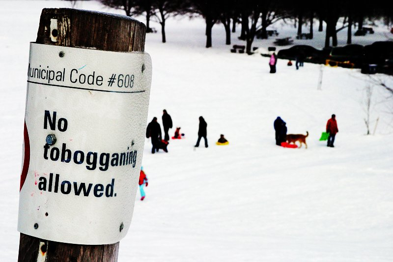 No Tobogganing    (click for previous picture)