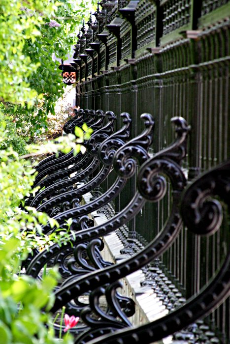 Osgoode iron fence    (click for previous picture)