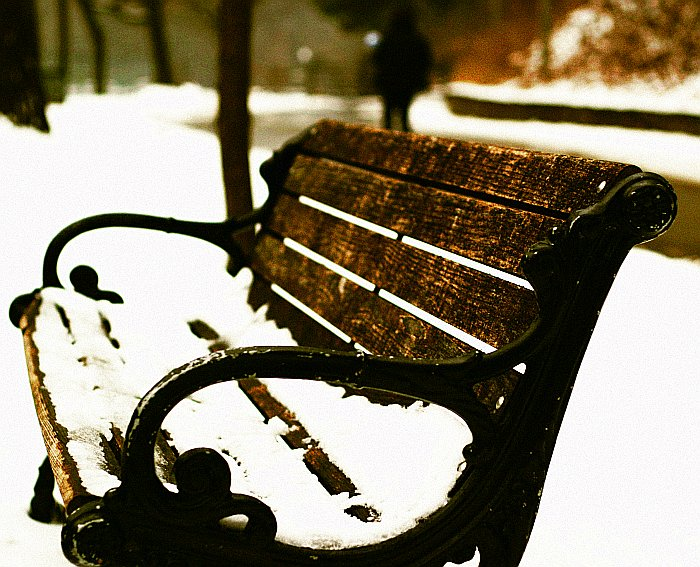 Park Bench Highpark Winter    (click for previous picture)