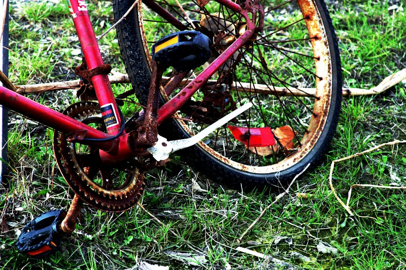 Red Bike Trash    (click for previous picture)