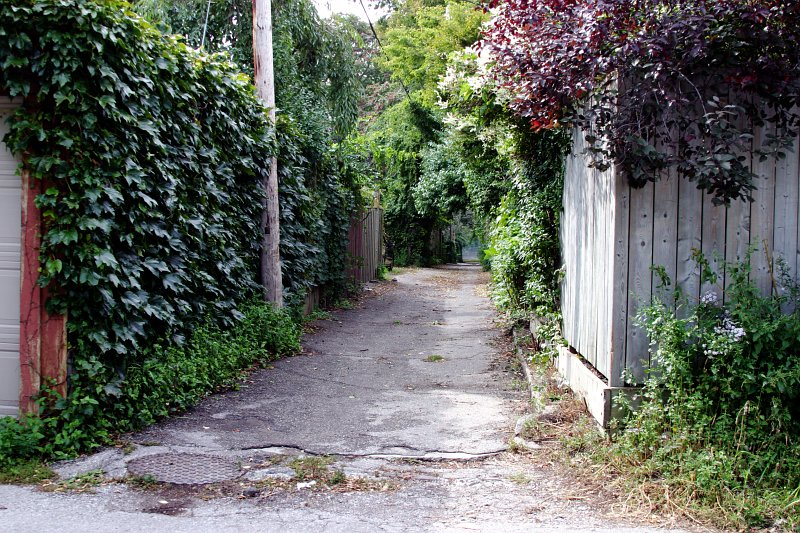Riverdale Alleyway    (click for previous picture)