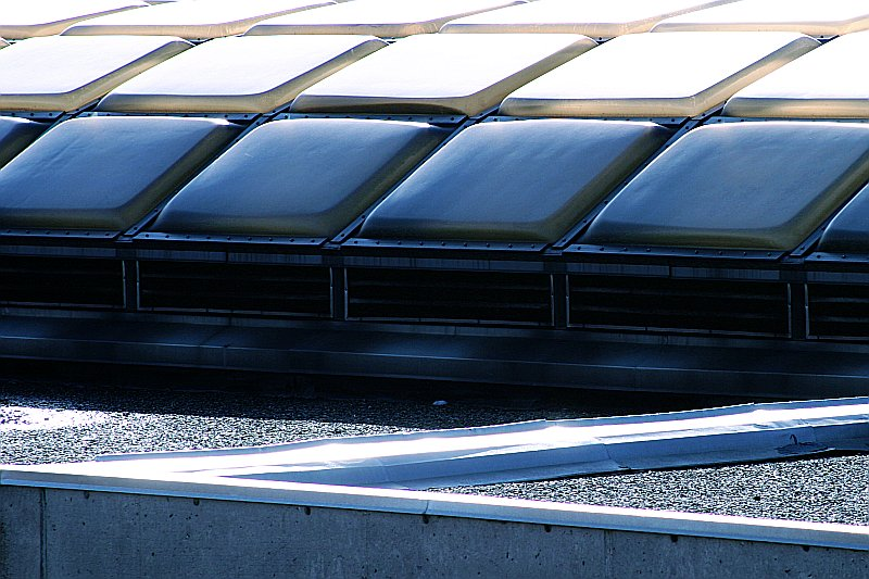 TTC Roof panels    (click for previous picture)
